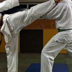 20200126_Karate_Bild_14_z